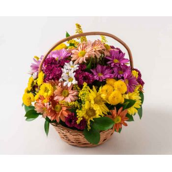 Brasília online Florist - Basket of Colorful Daisies Bouquet
