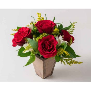 Brasília online Florist - Small Arrangement of Roses and Astromelia Bouquet