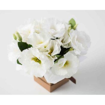 Passo Fundo flowers  -  Small Lisianthus Arrangement	 Flower Delivery