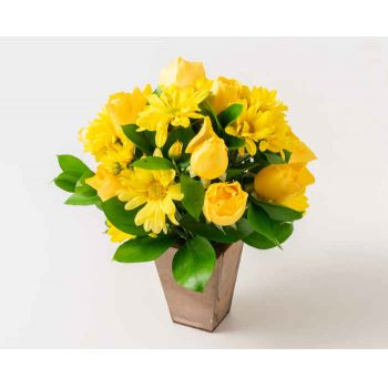 Ferraz de Vasconcelos flowers  -  Arrangement of Yellow Daisies and Roses Flower Delivery