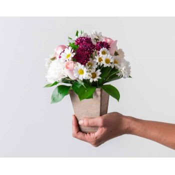 Sao Paulo flowers  -  Arrangement of Daisies, Carnations and Roses  Flower Bouquet/Arrangement