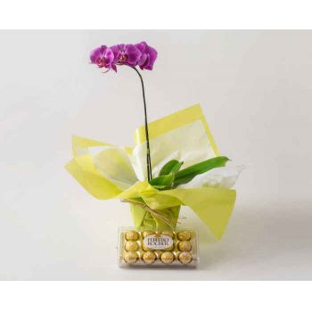 Belém online Florist - Pink and Chocolate Phalaenopsis Orchid Bouquet