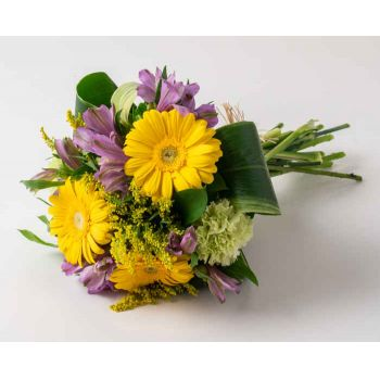 Ferraz de Vasconcelos flowers  -  Bouquet of Astromelia and Gerberas Flower Delivery
