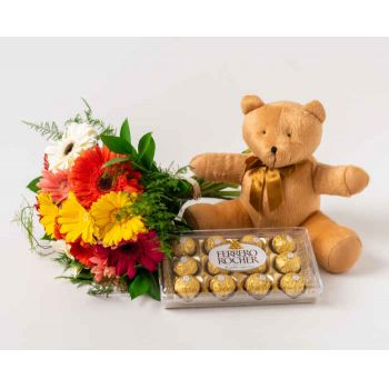 Patos flowers  -  12 Gerberas, Chocolates and Teddybear Delivery