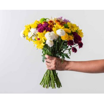 Itaguaí flowers  -  Bouquet of Colorful Daisies Flower Delivery