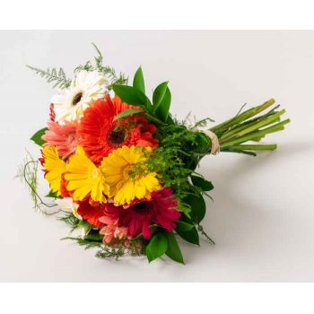 Ferraz de Vasconcelos flowers  -  Bouquet of 12 Gerberas Flower Delivery