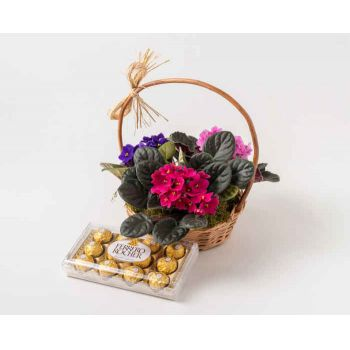 Marabá flowers  -  Basket with 3 Violets and Chocolates Flower Delivery