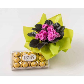 Cabo Frio flowers  -  Violet Vase for Gift and Chocolate Flower Delivery