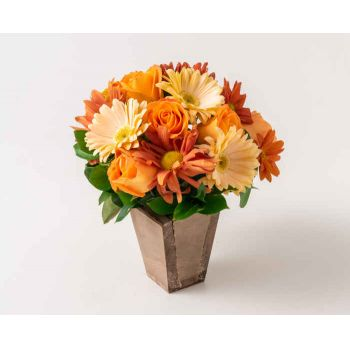 Belém flowers  -  Arrangement of Roses, Carnations and Gerberas Flower Delivery