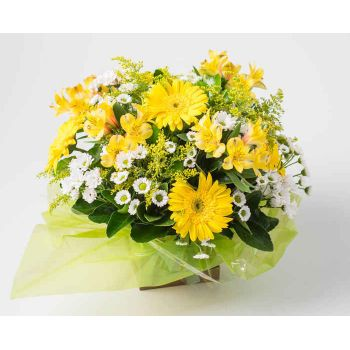 Passo Fundo flowers  -  Arrangement of White and Yellow Gerberas and  Flower Delivery