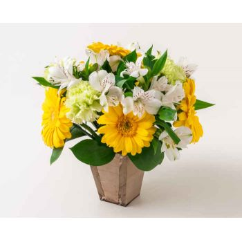 Belém online Florist - Arrangement of Yellow and White Gerberas and  Bouquet