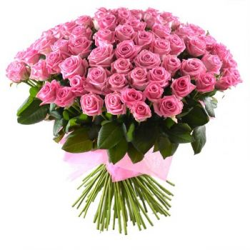 Pesaro flowers  -  Pink Wonderworld Flower Delivery