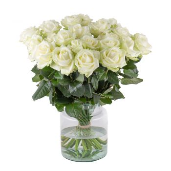 Hamburg flowers  -  Royal white Flower Delivery