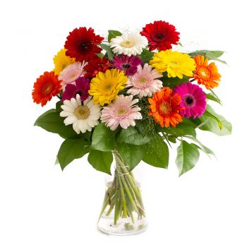 Hamburg online Florist - Joy of colours Bouquet