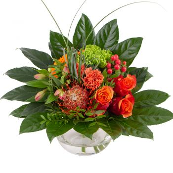 Wuppertal flowers  -  Midnight dream Flower Delivery