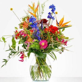 The Hague online Florist - Color Explosion Bouquet Bouquet