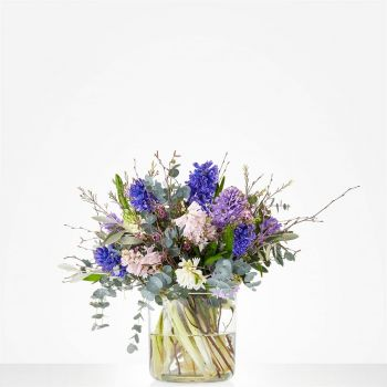 Doorn flowers  -  Bouquet Beautiful hyacinths Flower Delivery