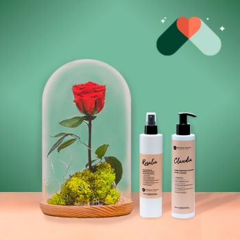 Aldaia flowers  -  Eternal Red Rose Flower Delivery
