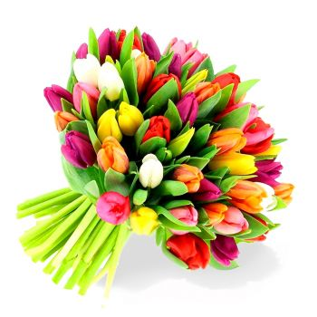 Russia flowers  -  Color splash Flower Delivery