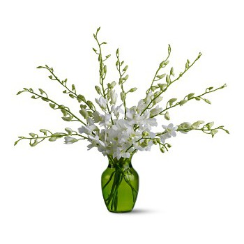 Ajman online Florist - Winter Fresh Bouquet