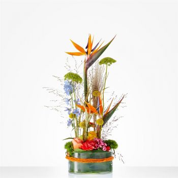 Haag Online blomsterbutikk - Happy Flower Arrangement Bukett