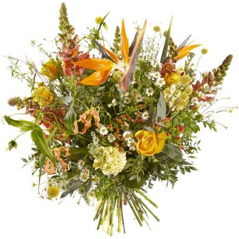 Britsum flowers  -  Bouquet Fiery Sun Flower Delivery