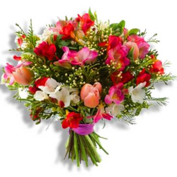 Binche flowers  -  Sunshine Flower Delivery