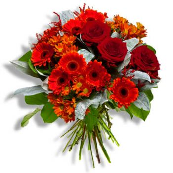 Tubize flowers  -  Diego Flower Delivery
