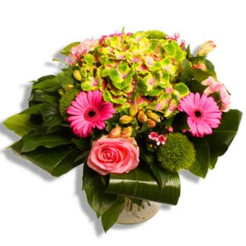 Saint-Nicolas flowers  -  Maggie Flower Delivery
