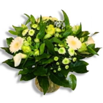 Halle flowers  -  Pure white Flower Delivery