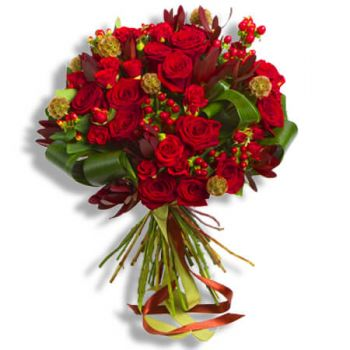 Halle flowers  -  Red roses Flower Delivery