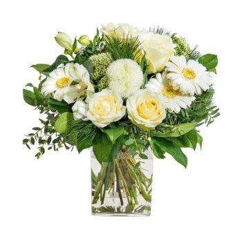 Tarbes flowers  -  White wonder Flower Delivery