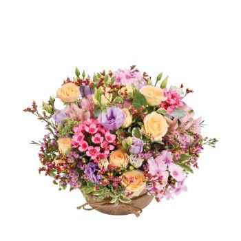 Tarbes flowers  -  Flower meadow Delivery