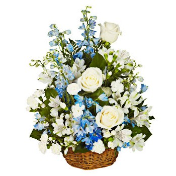 Dominican Republic online Florist - Blue Lagoon Bouquet