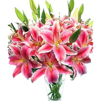Saint-Nicolas flowers  -  Pretty Pink Flower Delivery