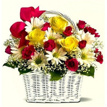 Fujairah flowers  -  Morning Spring Flower Delivery