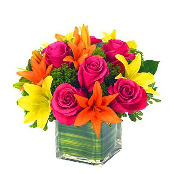 Boussu flowers  -  Jewels and Gems Flower Delivery