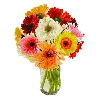 Madrid flowers  -  Daydream Flower Bouquet/Arrangement