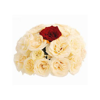 Malaga online Florist - My one and Only Bouquet