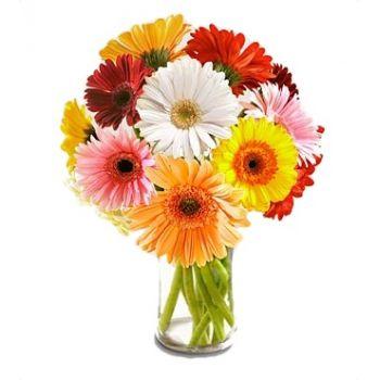 Omsk flowers  -  Day Dream Flower Bouquet/Arrangement