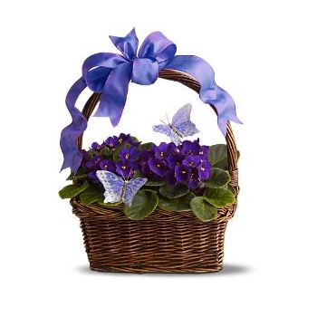 Valladolid online Florist - A basket of beauty Bouquet