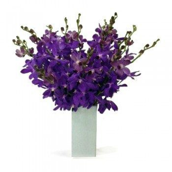 Peravia flowers  -  Devine Choice Flower Delivery