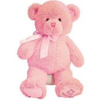 Paris blomster- Pink Teddy Bear  Levering