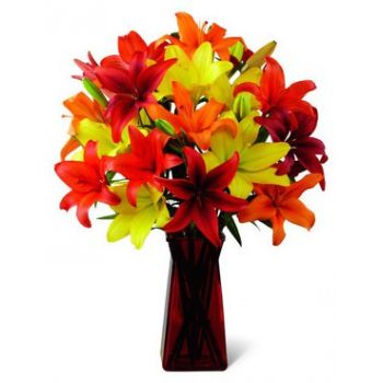 Ajman online Florist - Pure Bliss Bouquet