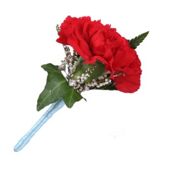 Saint George flowers  -  Carnation Buttonhole Flower Delivery