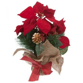 Elda flowers  -  Festive Spirit Flower Delivery
