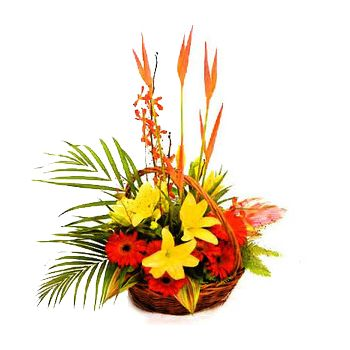 Santo Domingo flowers  -  Tropical Basket of Beauty Flower Bouquet/Arrangement