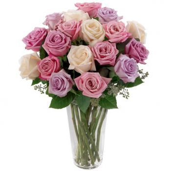 Canada Rosquin flowers  -  Dreamy Delight Flower Delivery