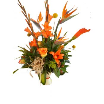 Barbados blommor- Orange Delight Bukett/blomsterarrangemang