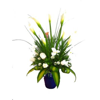 St. Lucia flowers  -  White Glory Flower Bouquet/Arrangement